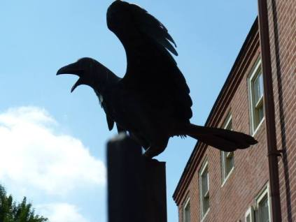thumbnail_raven at Poe house Philly photo kls